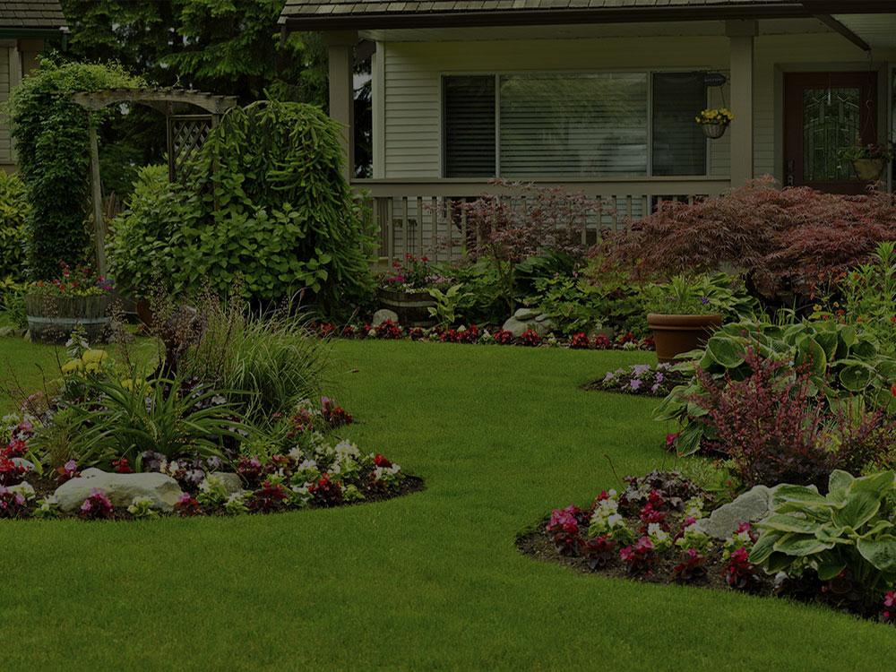 Montclair Landscape Design