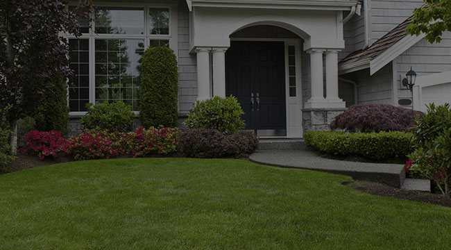 Glenridge and surrounding areas Landscaping